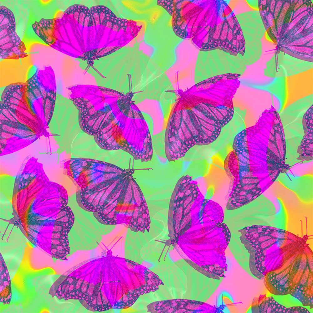 brightly colored butterflies on a brightly colored background